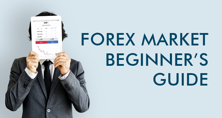 Forex Market Beginner S Guide